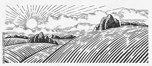 Rural landscape with hills, in the graphic style, illustration is hand-drawn.