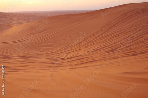 Poster de jardin Desert de sable sand texture