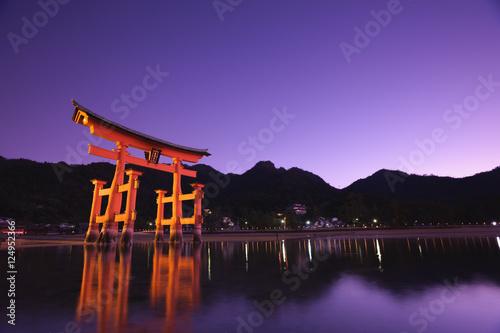 厳島神社大鳥居の夜景