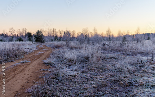 Papiers peints Foret brouillard frost in late autumn