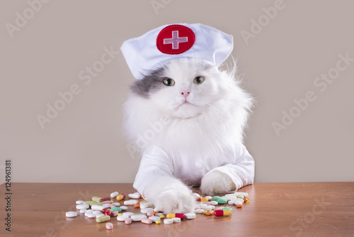 Photo  Cat in a suit of the doctor gives medicine