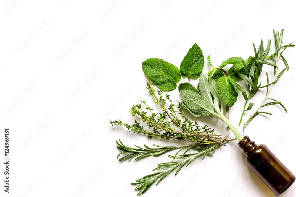 Fototapety, obrazy: mint, sage, rosemary, thyme - aromatherapy white background