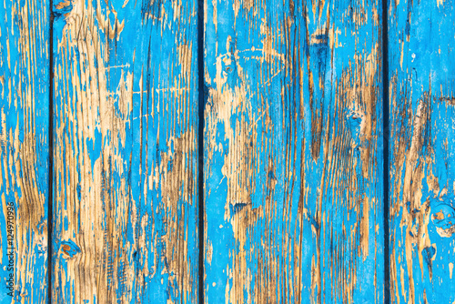 Fotografiet  Rustic weathered planks with blue paint peeling off