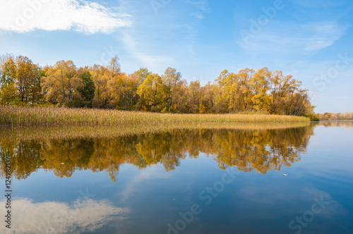 Fototapety, obrazy: Autumn calm on the lake reflection of trees in water