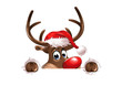 Rudolph watching