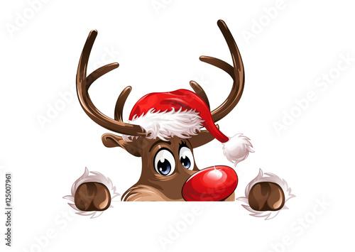 Foto-Doppelrollo - Rudolph watching (von Matthias Enter)