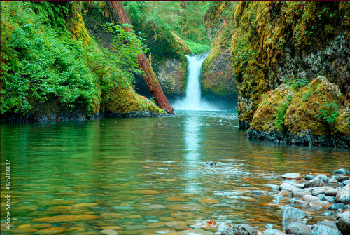 Photo  Green lagoon with waterfall in deep forest