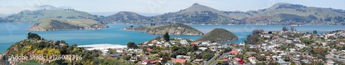 Wall Murals New Zealand Dunedin Suburb Panorama