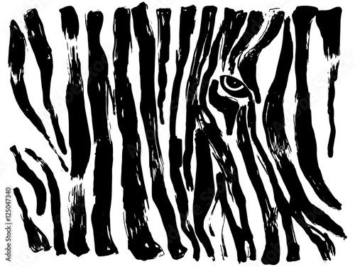 malowany-wzor-zebry