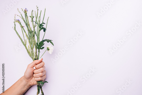 Valokuva  Stems of flowers in female hand with white manicure on a light b