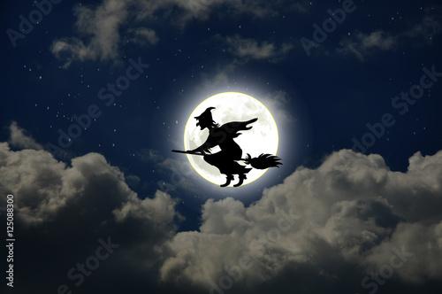 Fotografie, Obraz Witch on a broomstick