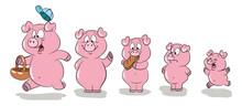 Fünf Kleine Schweinchen