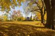 Herbst_03