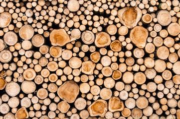 Panel Szklany Podświetlane Skandynawski Logs of trees