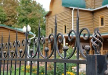 Artistic Forging. Wrought Iron Fence