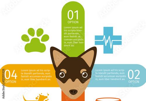 Doberman Face Illustration Dog and Pet Care Infographic  Buy