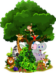 Naklejka Do pokoju dziecka funny animal cartoon with forest background