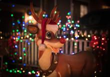 Rudolph The Raindeer With Boke...