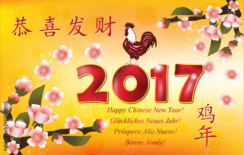 2017 chinese new year greeting card in many languages text translation happy new year
