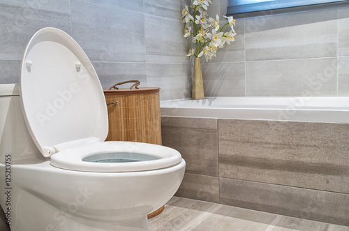 Fotografia, Obraz  Modern bathroom in luxury house