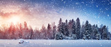 Fototapeta Natura - Beautiful tree in winter landscape in late evening in snowfall