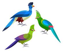 Stylized Birds - Great Blue Tu...