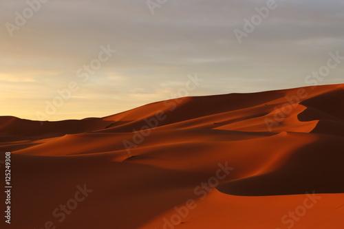 Deurstickers Baksteen サハラ砂漠