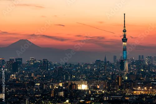 Poster Tokyo 東京スカイツリーと東京の夜景