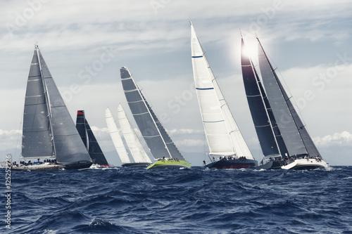Staande foto Zeilen sial boat race