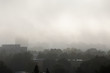 Morning fog in the city