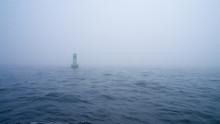 Green Channel Marker Buoy In T...