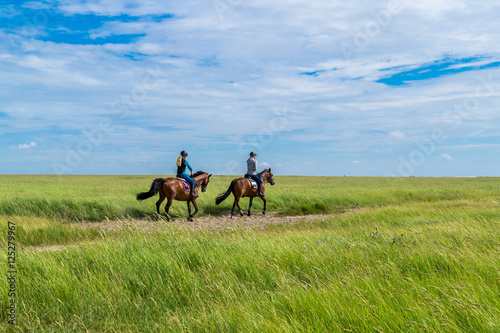 Photo Stands Horseback riding Ausritt in den Salzwiesen Nordsee