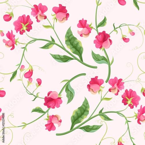 bezszwowe-kwiaty-sweetpea