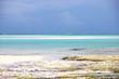 Пляжи острова Занзибар.