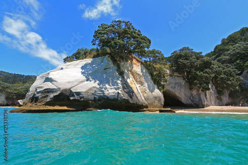 Deurstickers Cathedral Cove Cathedral Cove, Coromandel, New Zealand