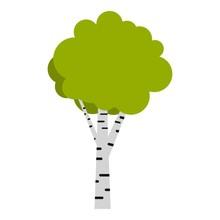 Birch Icon. Flat Illustration Of Birch Vector Icon For Web