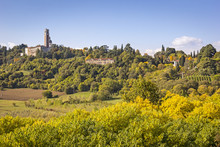 View Of The Monte Berico In Vicenza, Italy