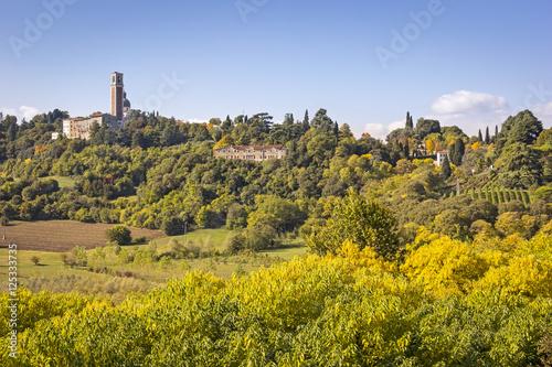 Fotografie, Obraz  View of the Monte Berico in Vicenza, Italy