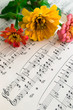 Flowers zinnia on playing notes on music sheet background