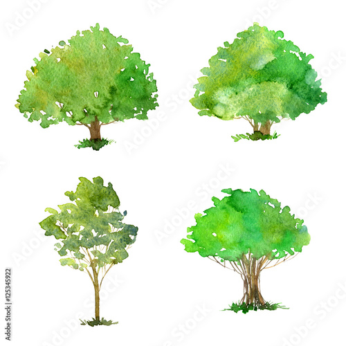 Photo Stands Kids set of trees drawing by watercolor