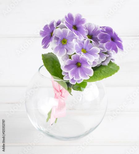 Foto op Plexiglas Magnolia Bouquet of primroses in round vase