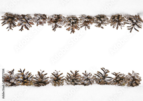 Cones Snow Winter Frame Of Pine Cone Border Decoration Isolated