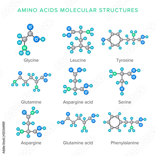 Vector molecular structures of amino acids isolated on white set Wallpaper Mural