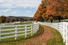 Autumn Colors At A Horse Farm