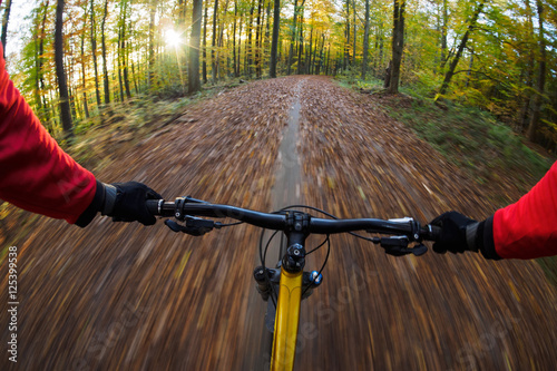 Mountain biker rides through forest with speed. Canvas-taulu
