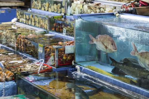 Noryangjin Fisheries Wholesale Market , Expansive wholesale & re Wallpaper Mural