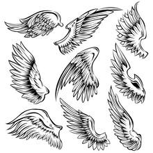 Bird Wings Black White Set