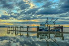 Cape Purse Seiner