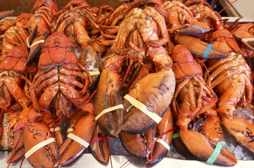 Freshly cooked lobsters on sale in a seafood shop in Alma, New Brunswick, Canada Canvas Print