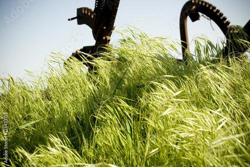 Old Farm equipment in Grass